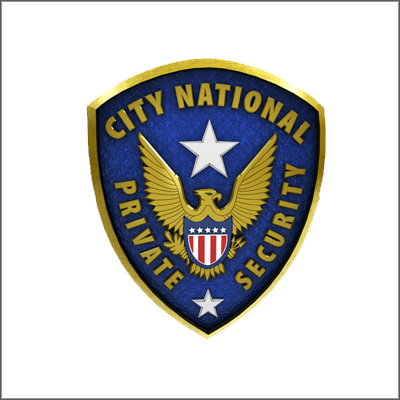 City National Security